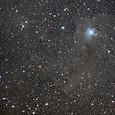 アイリス星雲(NGC7023)、vdB141